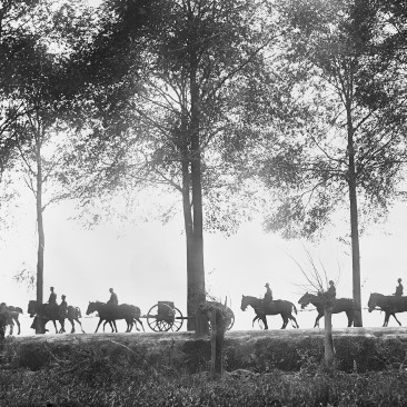 A view, in silhouette, of Australian artillery limbers proceeding along the Ypres Road, 25 Sep 1917